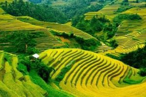 sapa travel guide