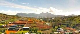 dalat tourist attractions