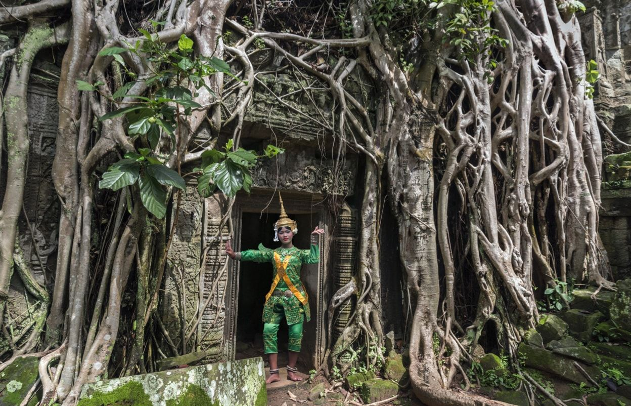 Ta Prohm Temples Guide Opening Hours Amp Entrance Fees